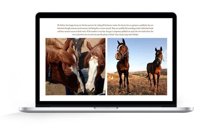 Webdesign Hamburg Cappadocia hoofprinttrails horses